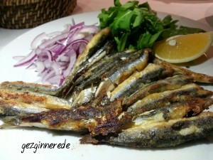 Kikas Restaurant balık kikas restaurantda fasıl