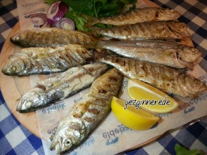Balık elde balık